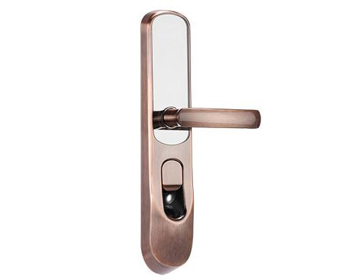 指纹密码卡锁DS-L2-FCP
